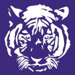 HHSO_white-tiger